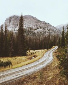 """""""Backroads of Wyoming"""""""