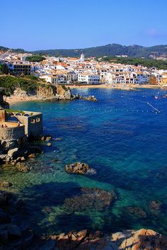 Costa Brava, Spain - spent a summer there once many years ago - a good adventure & really good food (lots of olive oil & lemon, garlic & fresh veggies, etc.)