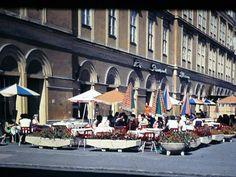 Szeged étterem '81