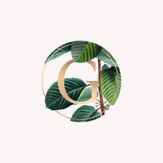 Nature themed letter g Free Vector Background Design Vector, Leaf Background, Badge Design, Logo Design, Dream Illustration, Plant Logos, Nature Vector, Organic Logo, Letter G