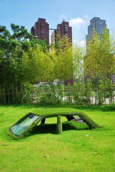 cars in grass, Taiwan