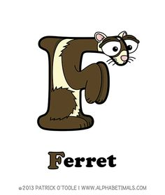Ferret - Alphabetimals make learning the ABC's easier and more fun! http://www.alphabetimals.com