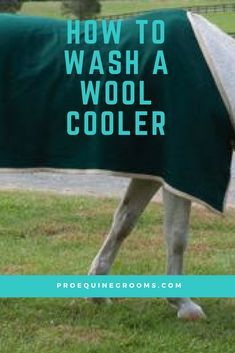 How to clean your horse's wool coolers!