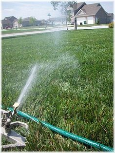 Advice on Buying the Best Sprinkler and Watering Your Lawn the Right Way!