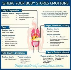 body health Emotions Affect Our Physical Health %% Health And Beauty, Health And Wellness, Health Tips, Health Care, Health Fitness, Health Facts, Wellness Tips, Physical Pain, Emotional Pain