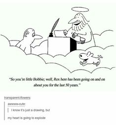 I firmly believe that God allows animals into heaven since He created them. Only problem I have with this comic is that there is no perception of time in heaven, but whatever.