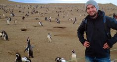 Walking with penguins on Isla Magdalena in Chile (Travel Video)