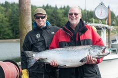 July 31 to August 4 Trip. Our 25th anniversary season continues to exceed expectations, with quite a few 40+ fish caught in sunny Haida Gwaii. http://www.peregrinelodge.com/blog.php?p=242