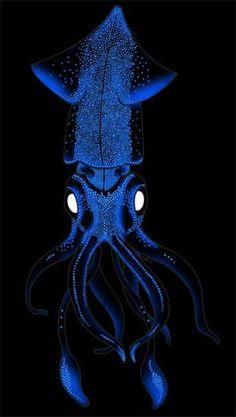 firefly squid ile ilgili görsel sonucu
