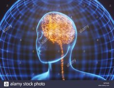 Neural Connections, Concept, Illustration, Illustrations