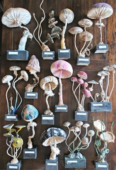 By Mister Finch  beautiful! they look like silk. something for my papier mache forest