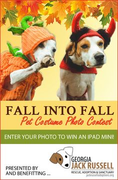 C'mon, don't be shy! Get those costume pics entered! Let's have some fun--while raising funds--and send the lucky winner home with a brand new iPad Mini! Enter to win now!