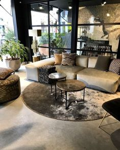 Begonia: see how to care, types and ideas of decoration - Home Fashion Trend Home Living Room, Interior Design Living Room, Living Room Decor, Bedroom Decor, Monochromatic Decor, House Styles, Home Decor, Ideas, Home Ideas