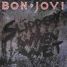 Bon Jovi - Slippery when wet ....