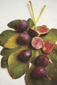 FIGS - I plan to grow some of these.  I just recently discovered that I actually do like figs!  :)