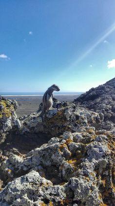 Vulkan Calderon Hondo  Fuerteventura novembre 2016 Pic Beatrice C.
