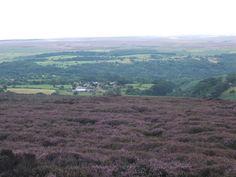 North Yorkshire Moors