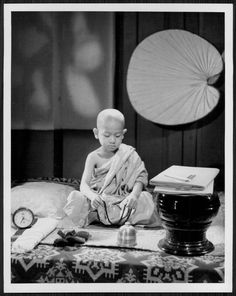 1957 Young Buddhist Monk 9yr BURMESE Lad Press Photo | Collectibles, Photographic Images, Contemporary (1940-Now) | eBay!