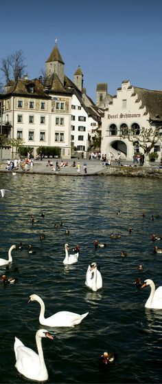 Incredibly Sublime Places to Travel to this Winter Rapperswil-Jona, Switzerland Wonderful Places, Beautiful Places, Travel Around The World, Around The Worlds, Places To Travel, Places To Go, Visit Switzerland, Beaux Villages, Belle Villa