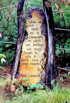 love our land ...