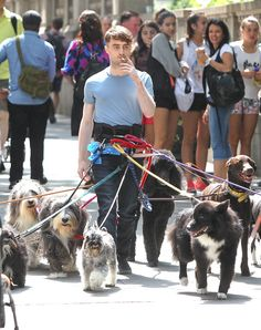 When this picture was taken. Because it's quite simply the best. | 26 Times Daniel Radcliffe Was A King Among Men