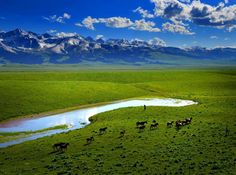 I've flown over Mongolia so many times, that one day I would really love to go there.