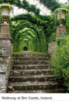 Birr Castle-County Offaly, Ireland
