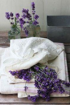 Lavender Cottage, Provence Lavender, French Lavender, Lavender Fields, Lavender Color, Lavender Flowers, Purple Flowers, Malva, Shades Of Purple