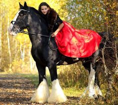 Instagram media by fairytale.horse - Анастасия и Принц. Порода Тинкер. Уроки верховой езды и фотосессии. --- Anastasia and Prinze. Breed Tinker. Lessons of riding and photoshoot. --- 📞 +7(495)908-98-68. --- @e_skripnik  #верховаяезда занятияверхом #выездка #фотосессии #фотосессиислошадьми #конкур #лошади #фото #красивыефото #лето #осень #photo #life #photographer #horsebackriding #horse #horses #horsesofinstagram #horsepower #photos #horseriding #love #loveit