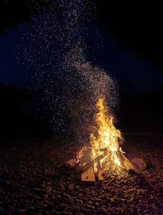 The perfect photo of a campfire – impressive – - Monica R. Funny Internet Memes, Architecture Quotes, Travel Humor, Perfect Photo, Celebrity Weddings, High Quality Images, Nature Photography, Funny Pictures, How Are You Feeling