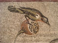 A finer bird from the Aquatic Mosaic, Pompeii, now in the Naples Museum.