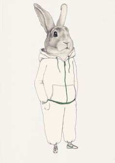 Rabbit in track suit.