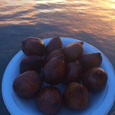 Salak ( Snake fruit ) #luchiachia #luchiacookbook #chef #chefconsultant #chef #chefoninstagram #foodblog #foodblogger #foodie #foodiegram #gourmandise #yummy #delicious #snakefruit #healthy #foodlover #photooftheday #island #ocean