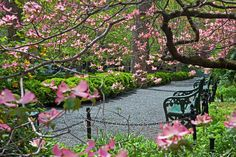 14 Gramercy Park