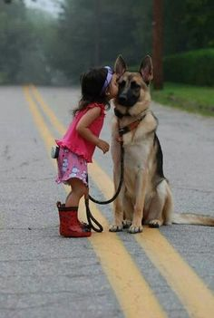 German Shepherd Dog / Man's Best Friend on imgfave Animals And Pets, Baby Animals, Funny Animals, Cute Animals, Cute Puppies, Dogs And Puppies, Cute Dogs, Doggies, Funny Dogs