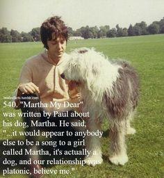 Beatles Love, Les Beatles, Beatles Art, Beatles Photos, Paul Mccartney, Martha My Dear, The Quarrymen, Sir Paul, People Of Interest