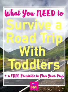 How my husband and I survived a 16 hour road trip with our then 2 year old twins + a free printable to plan your own road trip