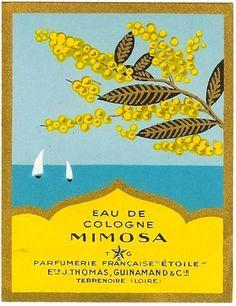 art deco vintage advertising poster, Eau De Cologne, Mimosa
