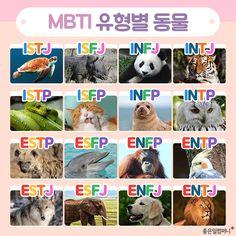 Cognitive Functions Mbti, Mbti Functions, The Office Mbti, Mbti Compatibility Chart, Mbti Istj, Mbti Charts, Mbti Personality, Cute Cartoon Wallpapers, Otaku Anime