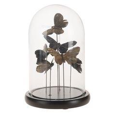 Haal vrolijke vlinders in huis met de Glazen Stolp met Kunst Vlinders. De stolp heeft een hoogte van 26,5 centimeter en een doorsnede van 17,5 centimeter. Er staan 6 vlinders in verschillende hoogtes op de ronde houten ondergrond van de Glazen Stolp met Kunst Vlinders.Afmeting: Ø 17,5 x 26,5 cm - Glazen Stolp met Kunst Vlinders, 26,5cm Snow Globes, Home Decor, House, Accessories, Art, Homemade Home Decor, Home, Haus, Decoration Home