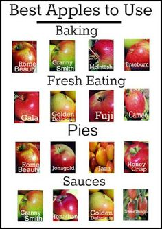 """Another Pinner wrote: """"An easy guide to the best apples to use in cooking & baking. I disagree with the Honeycrisp only under Pies though - it is the BEST one for fresh eating Think Food, Food For Thought, Do It Yourself Food, Food Facts, Baking Tips, Apple Recipes, Fruits And Veggies, Vegetables, No Cook Meals"""