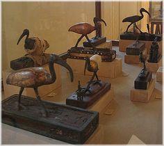 Ibis statues from Hermopolis Magna (Tuna el- Gebel) in the Mallawi Museum www.gitta-warnemuende.de almasryalyoum