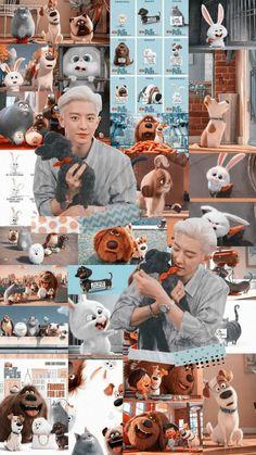 chanyeol and toben: pets lockscreen 🐶🐰 Park Chanyeol Exo, Baekhyun Chanyeol, Kpop Exo, Cl Rapper, Logo Online Shop, Baekhyun Wallpaper, Exo Album, Exo Lockscreen, Exo Fan Art