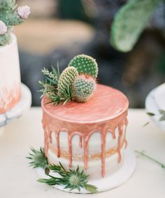 Drip Drip - Drip cakes are the biggest trend these days in wedding cakes, but we don't see why you can't serve one for dessert at your backyard bash! Beautiful Cakes, Amazing Cakes, Bolo Tumblr, Cactus Cake, Cactus Wedding, Cake Trends, Drip Cakes, Wedding Desserts, Mini Wedding Cakes