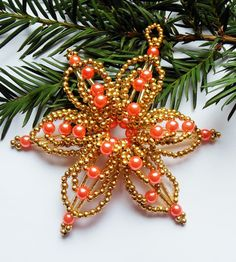 Christmas star orange-golden flower
