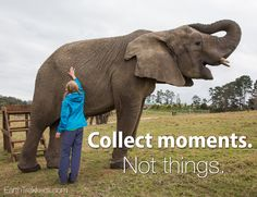 Collect moments. Not things. Travel Quote.