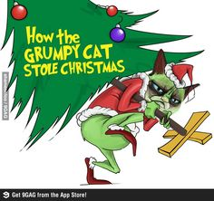 The Grinch and the Grumpy Cat The Grinch, Grumpy Cat Christmas, Christmas Humor, Christmas Time, Christmas Animals, Merry Christmas, Christmas Movies, Holiday Fun, Holiday Ideas