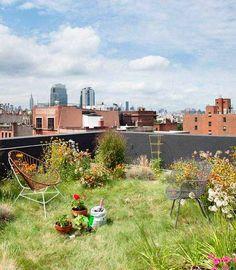 urban garden ideas rooftop garden