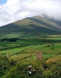 Dingle Peninsula, Kerry, Ireland by katiebrgit, via TrekEarth.