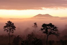 黎明/Daybreak: Thung Salaeng Luang, Phitsanulok, Thailand